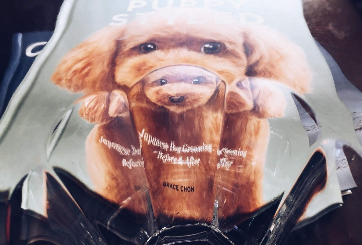 Puppy Styled shot through a drinking glass! - student project