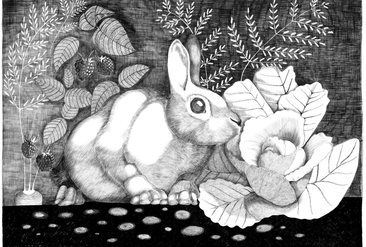 Rabbit escape - student project