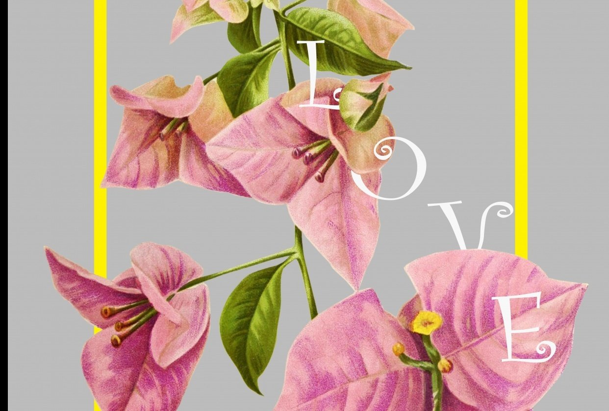 floral-typo - student project