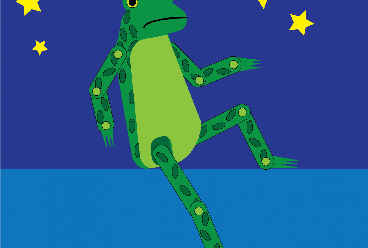 Sad Toy Frog - student project