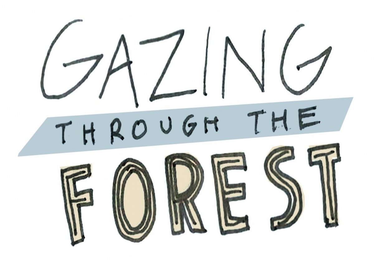 Animating Letters, Logos, and More - Hand Lettered GIF - student project