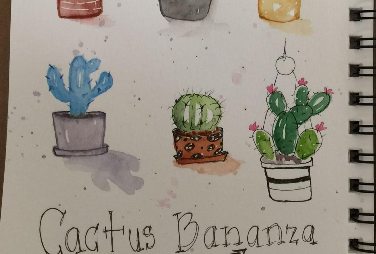 Cactus Bananza - student project
