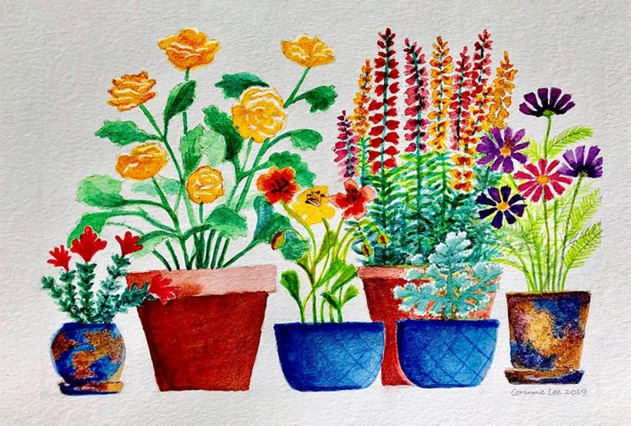 Botanical Illustration: Paint a Colorful Garden with Watercolor and Gouache - student project
