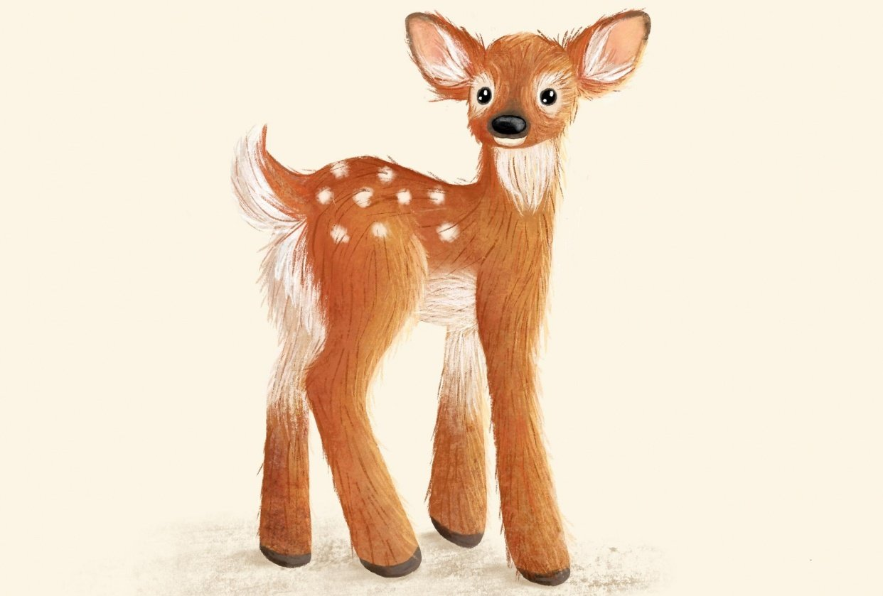 Fawn - student project