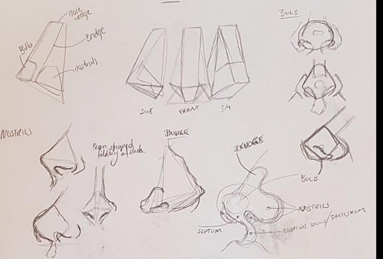 Noses - student project