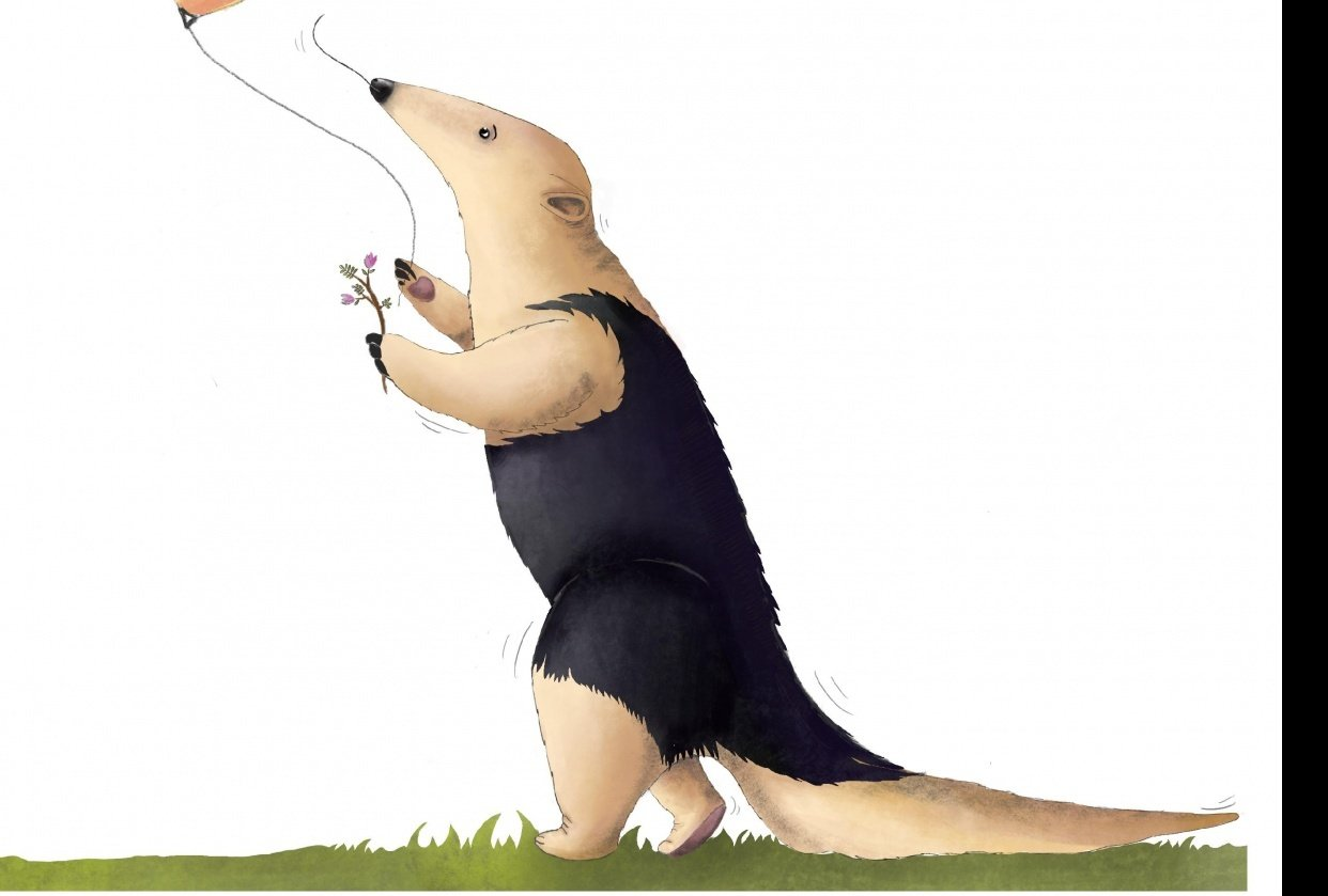 Anteater - student project