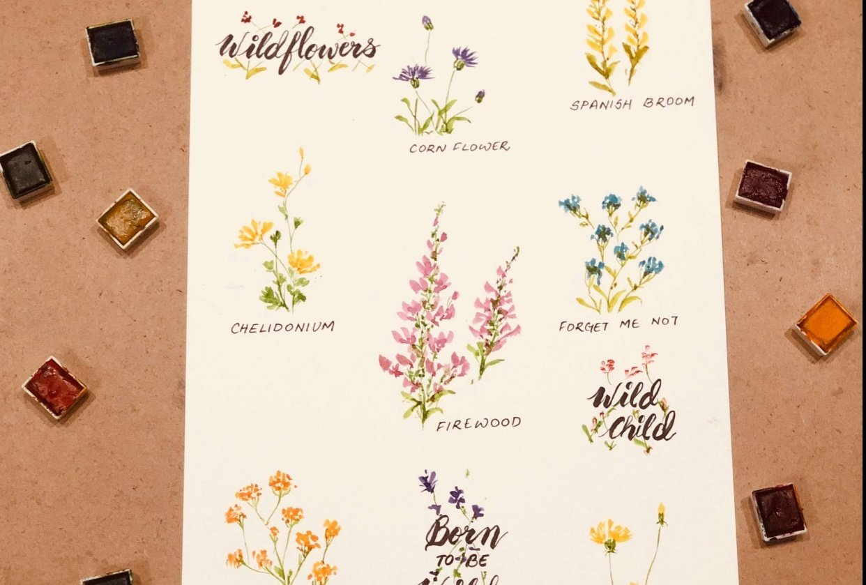 Born to be Wild - Wildflowers in Watercolours - student project
