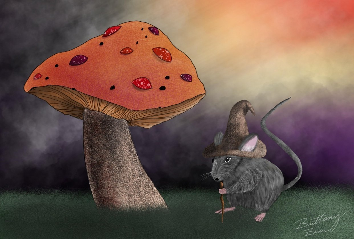 Wizard Mouse - student project