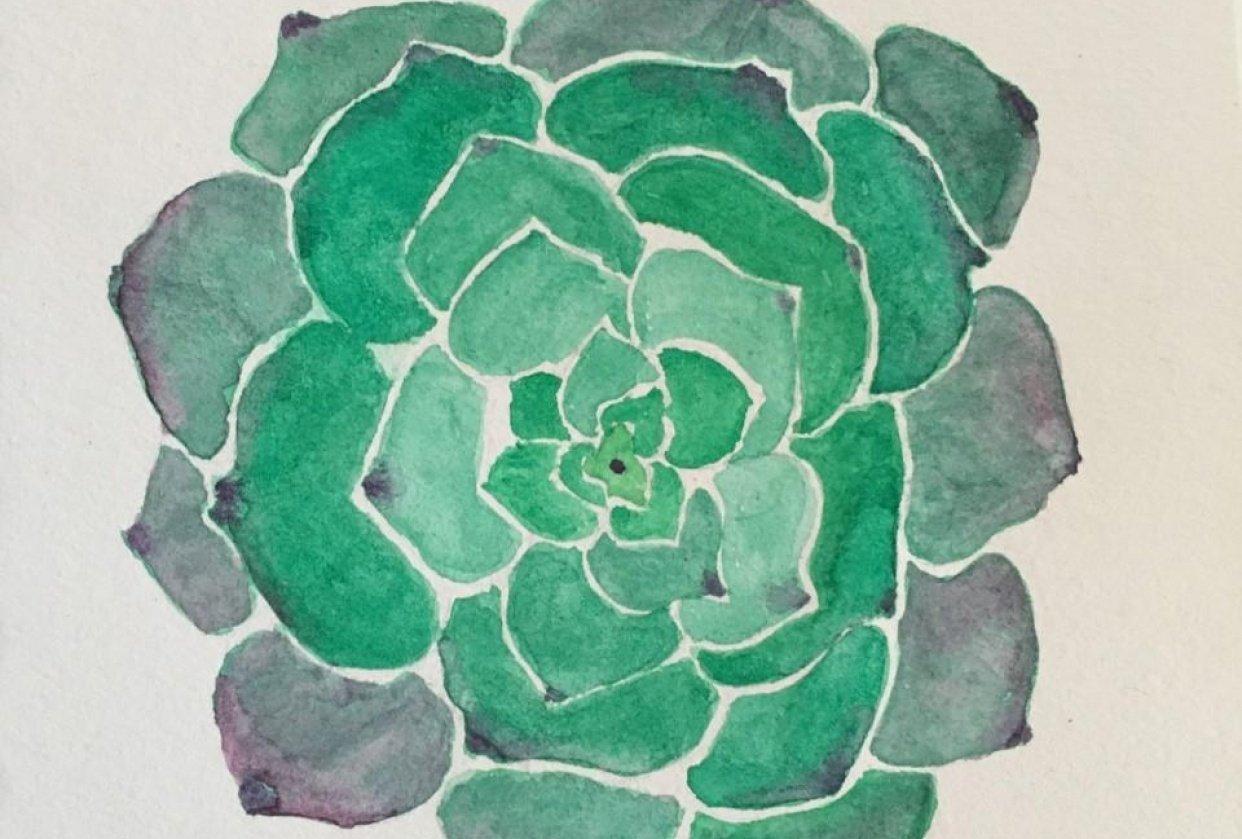 Succulent I - student project