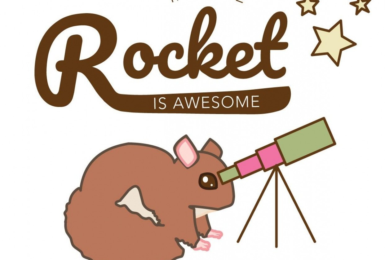 Flying squirrel shoots for the stars - student project