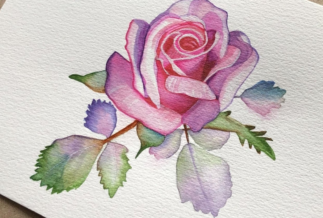 My Watercolour Rose - student project