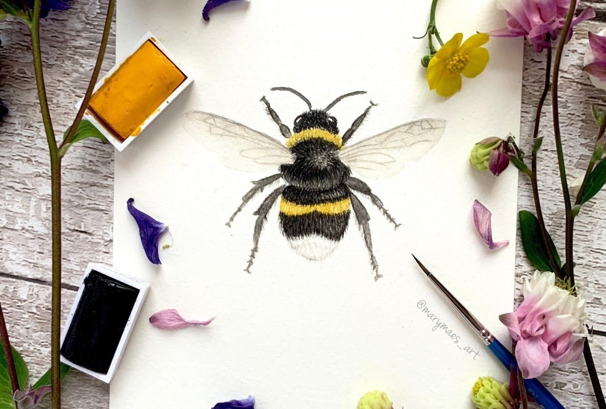 Busy Bumblebee - student project