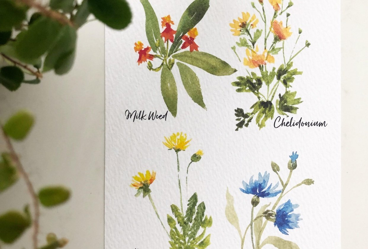 Painting Wildflowers with Sushma - student project