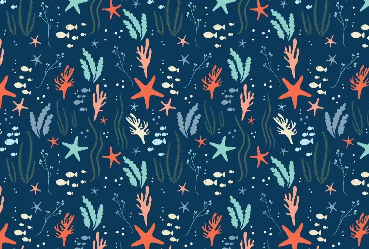 Sea & Stars - student project