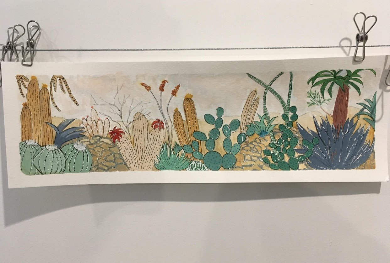 Botanical Illustrations - student project