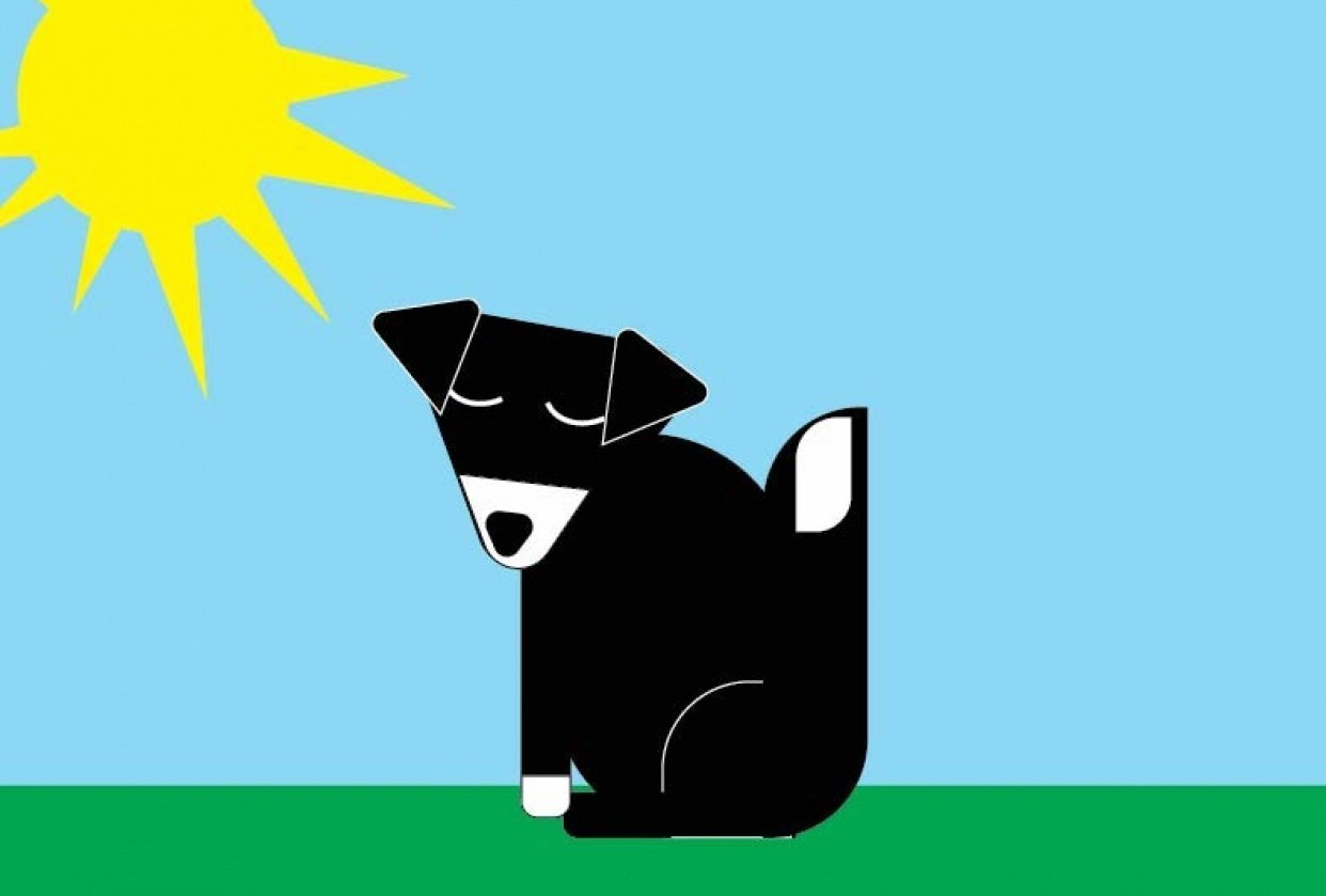 Bella dog - student project