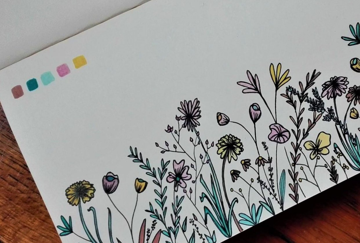 Botanical line drawing in soft spring colours - student project
