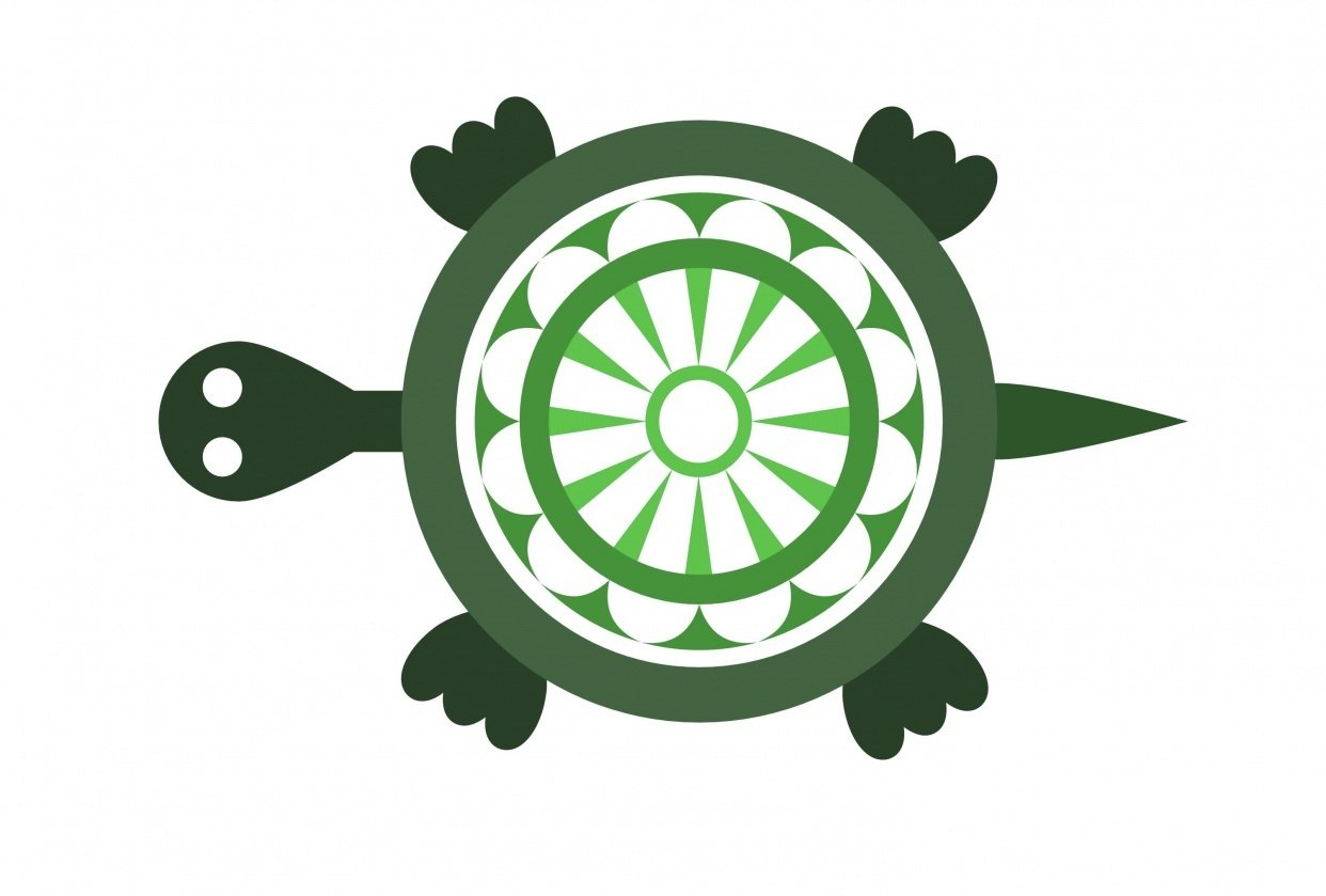 Turtle - student project