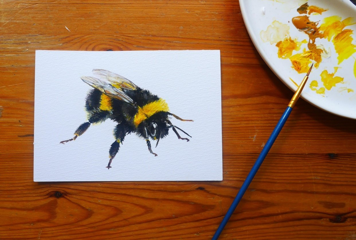 Bumble bee in gouache - student project