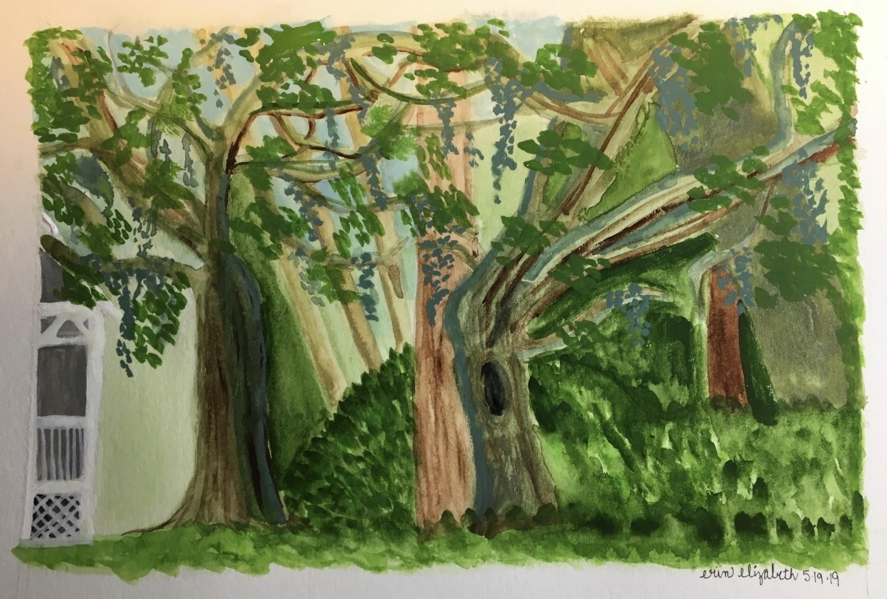 Backyard Botanicals in Gouache & Watercolor - student project