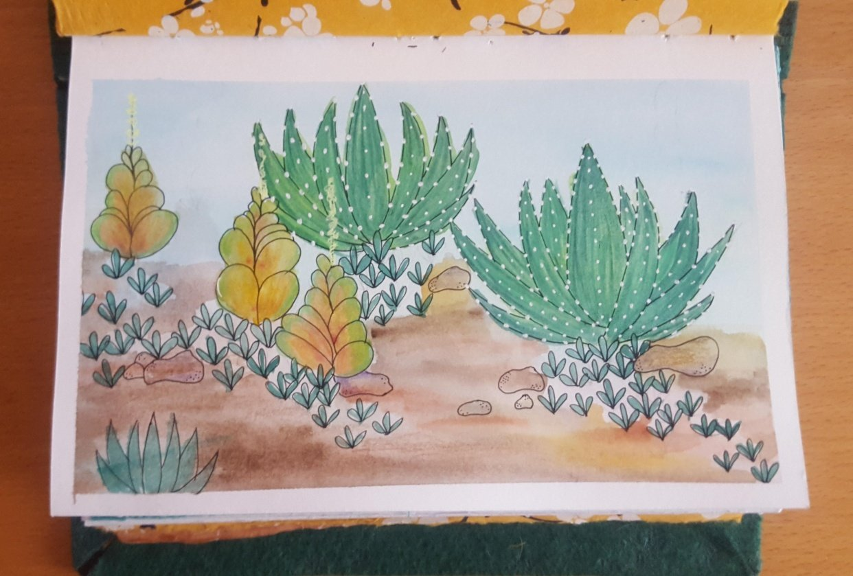 Succulent Scape - student project