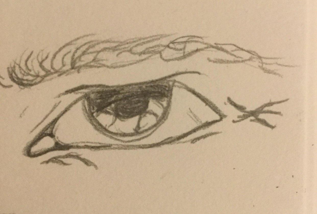 Eye study - student project