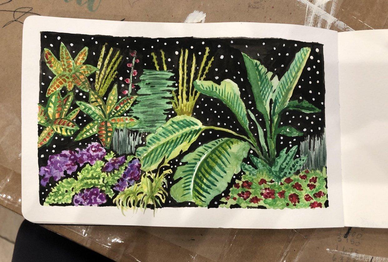 Botanical Illustration 1 - student project