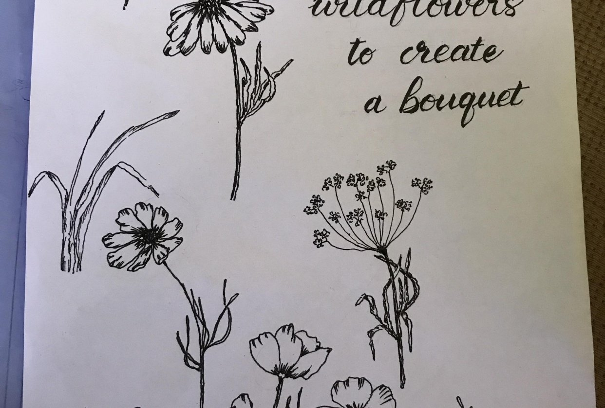 An attempt at drawing wild flowers - student project