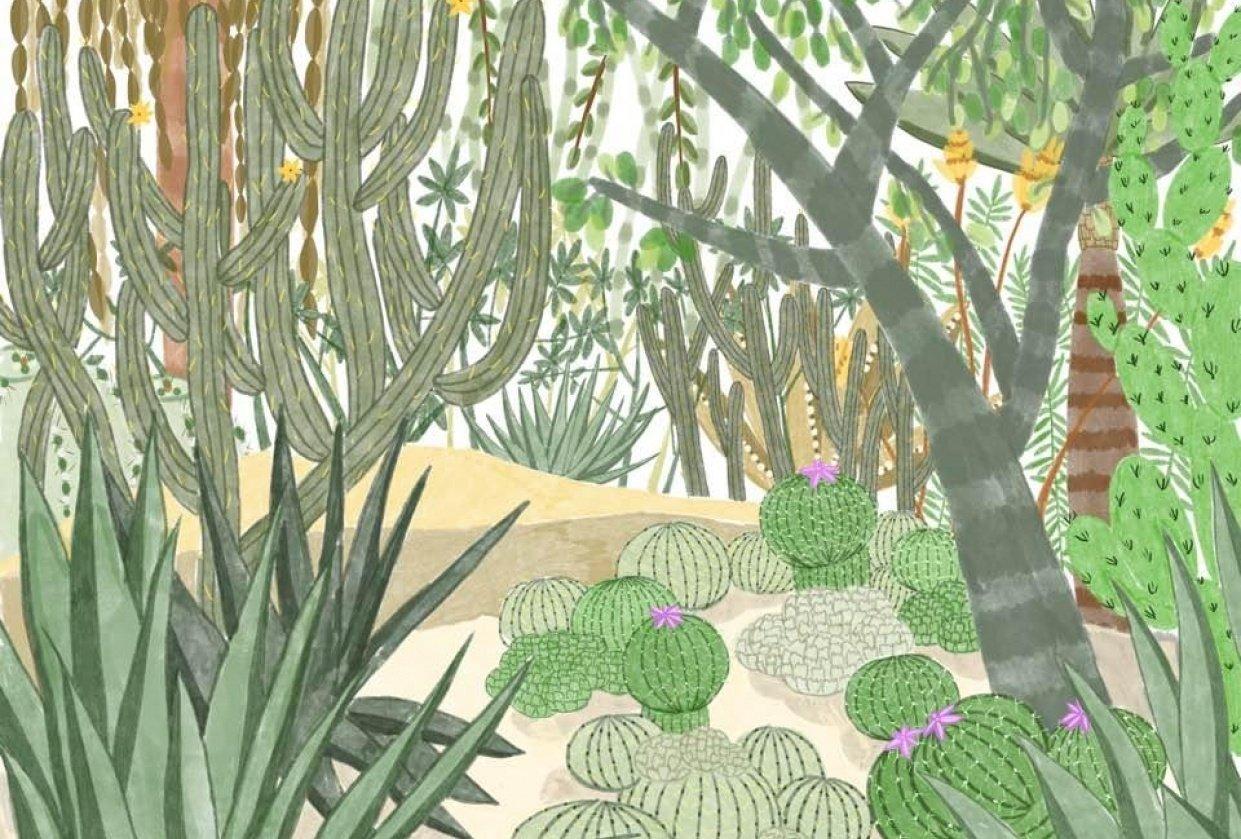 San Francisco Botanical Garden - student project