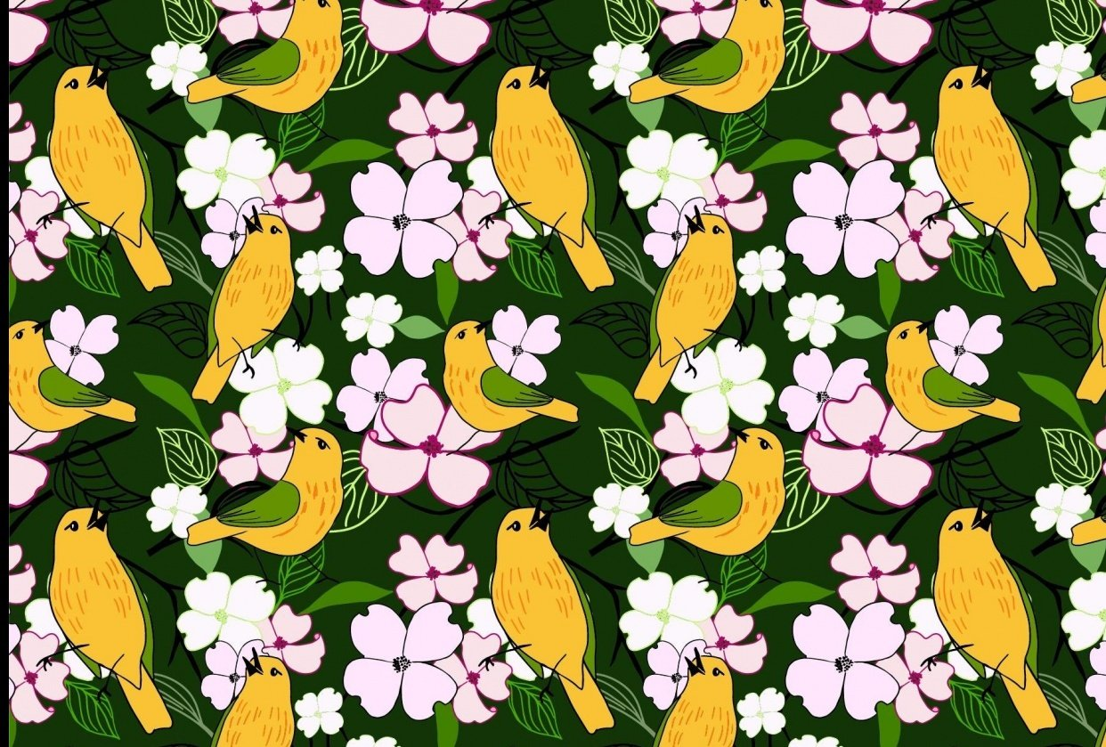 Yellow Warblers - student project
