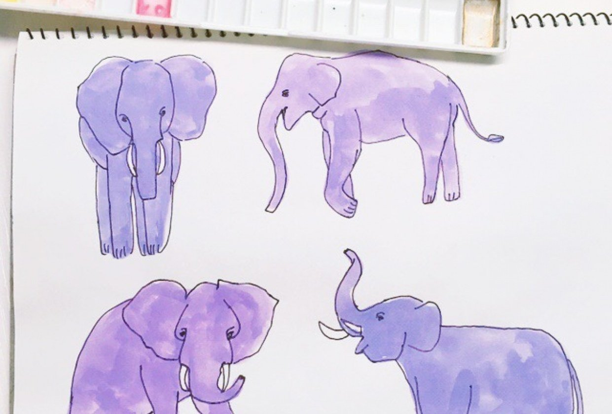 Elephants sketch - student project