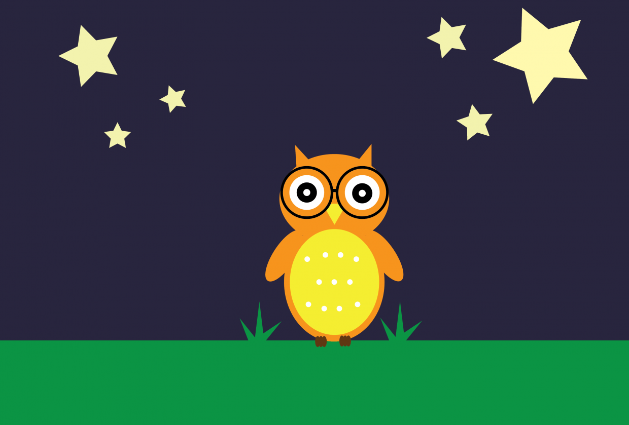 Project 1: Owl - student project