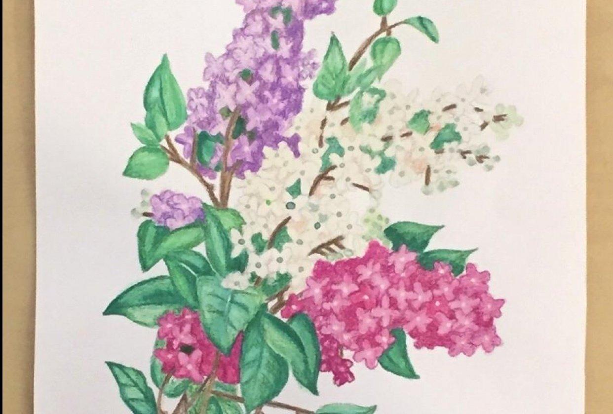 Vintage Inspired Botanical Illustration - student project