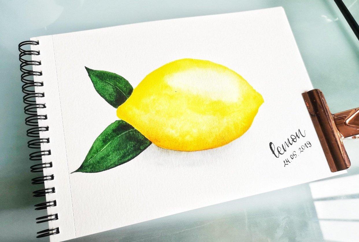 Citrus Fruits - student project