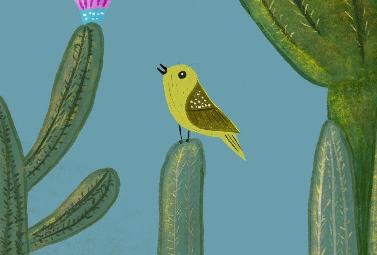 Little Cacti Garden - student project