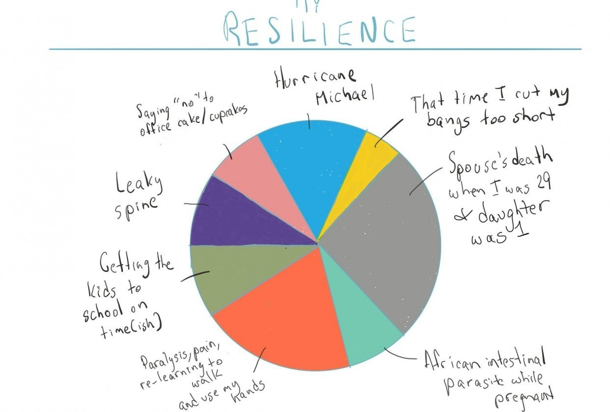 Resilience Pie Chart - student project