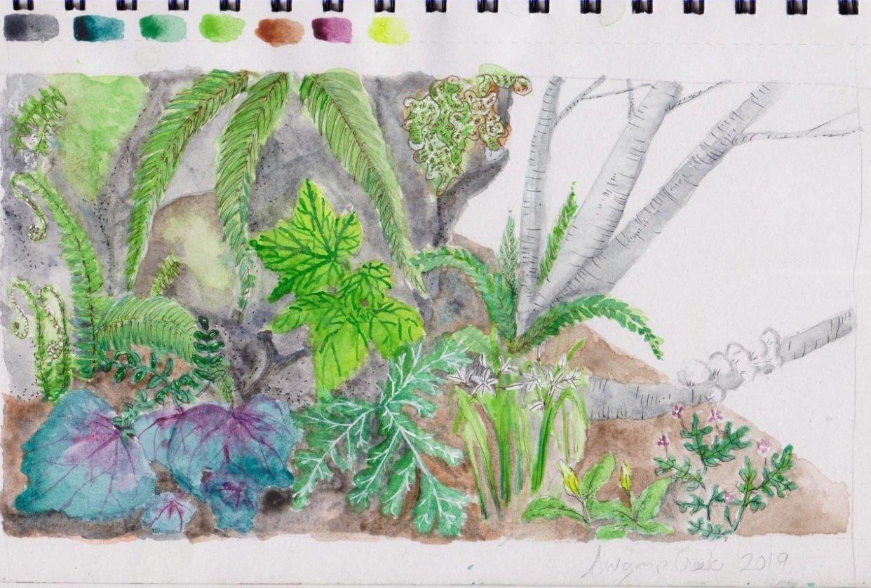 swamp creek - student project