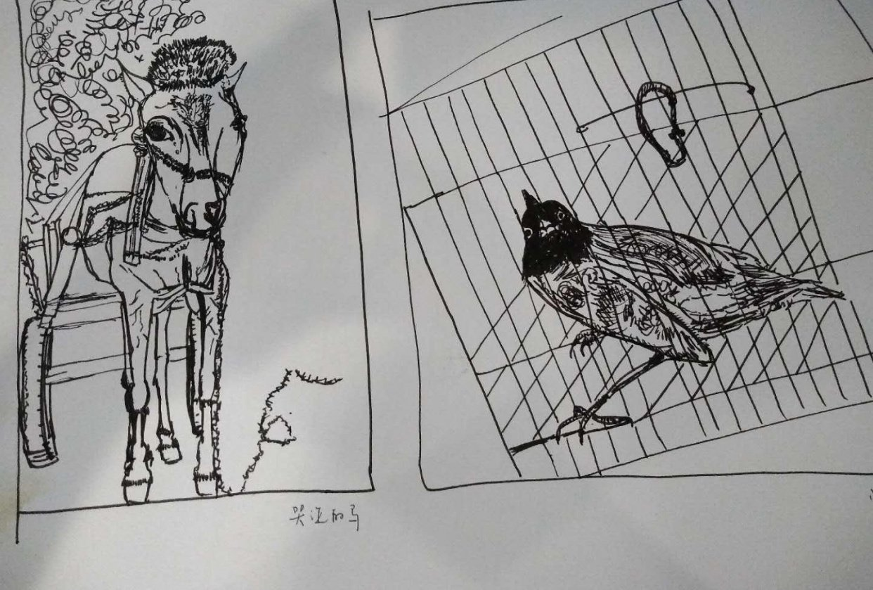 Animals in Hongcun - student project