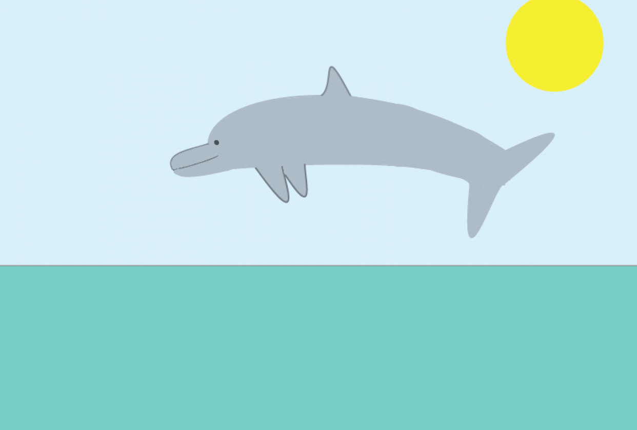 Project 1: Happy Dolphin - student project