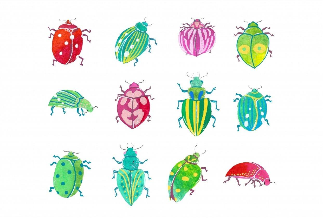 Ladybugs - student project