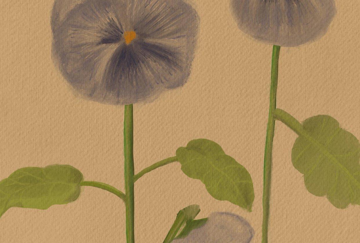 Vintage-Inspired Botanical Illustration - student project