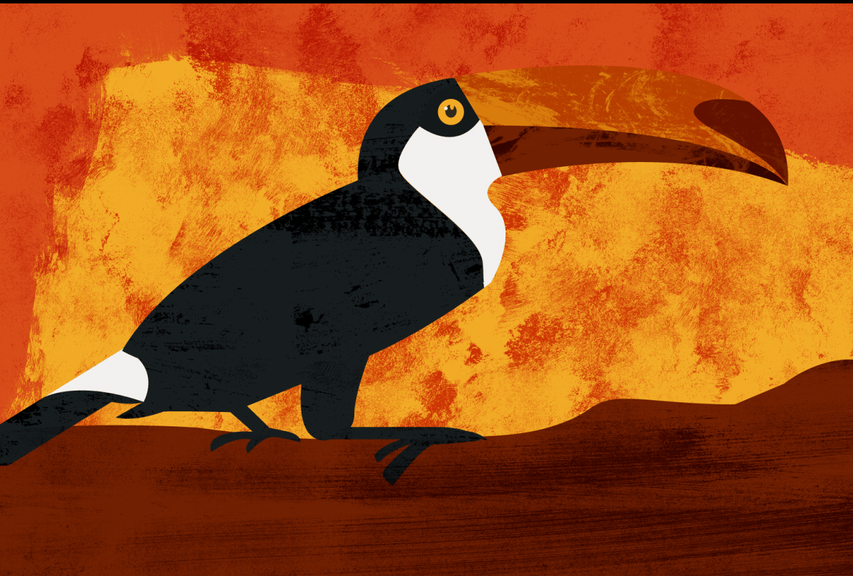 Trent the Trippy Toucan - student project