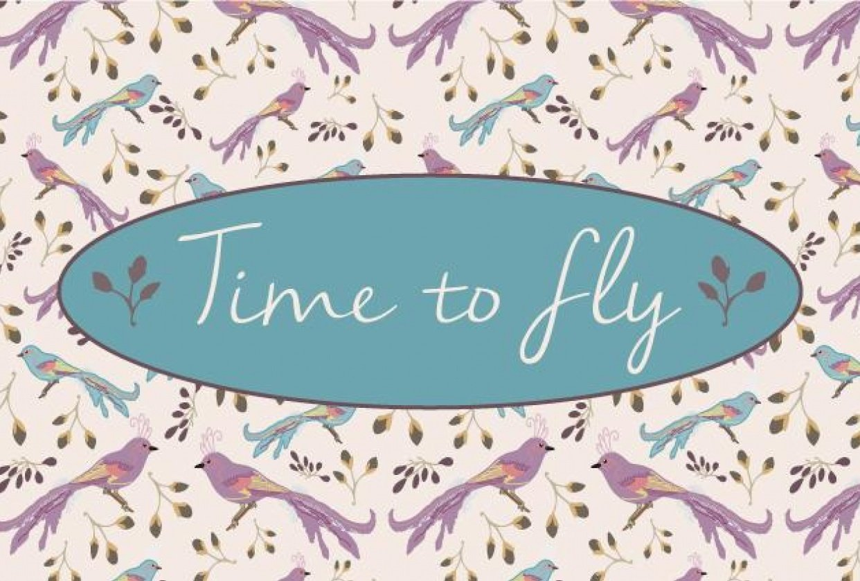 Time to Fly - student project