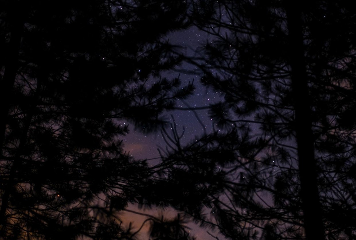 Outdoor Photography: Night - student project