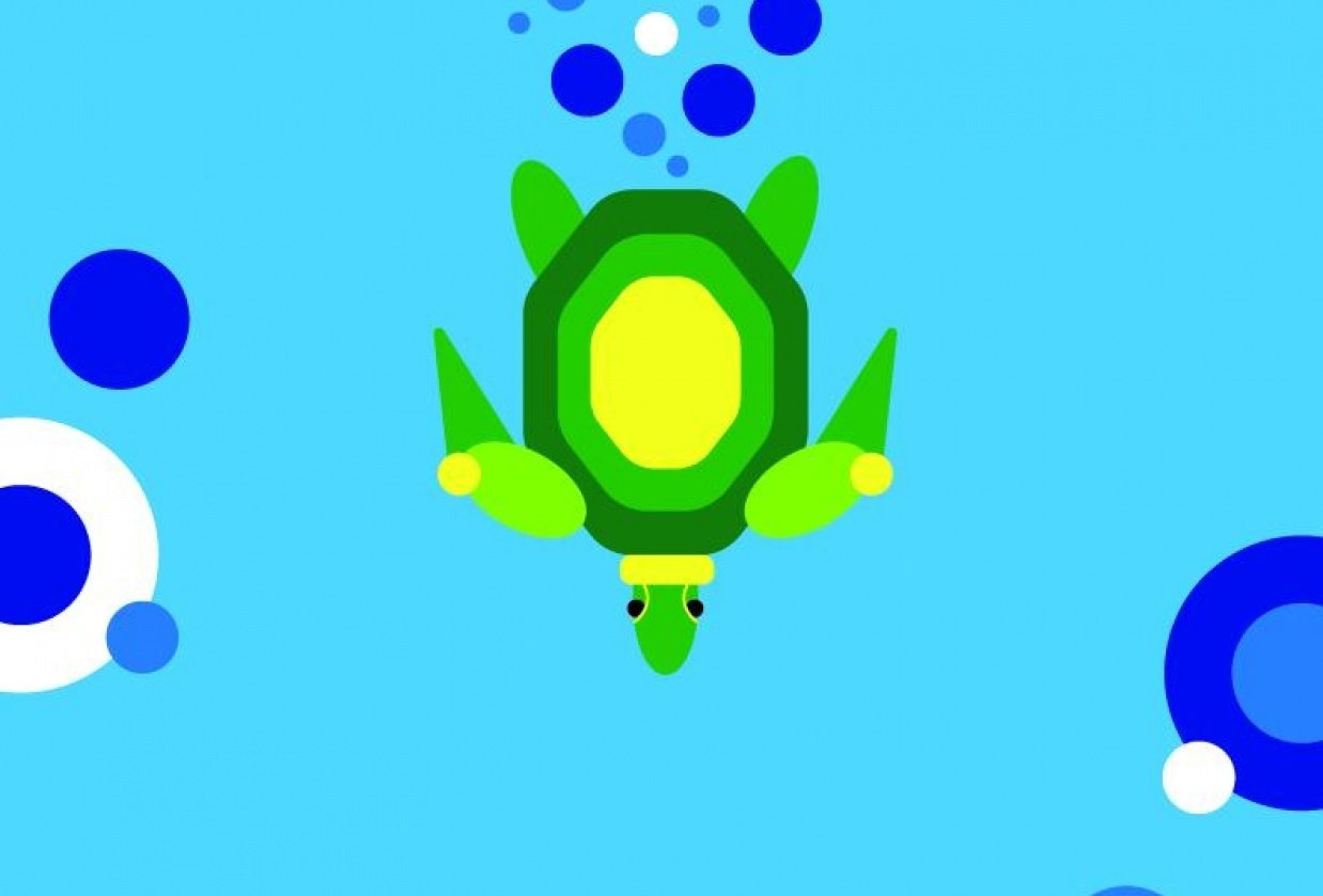 Simple Turtle - student project