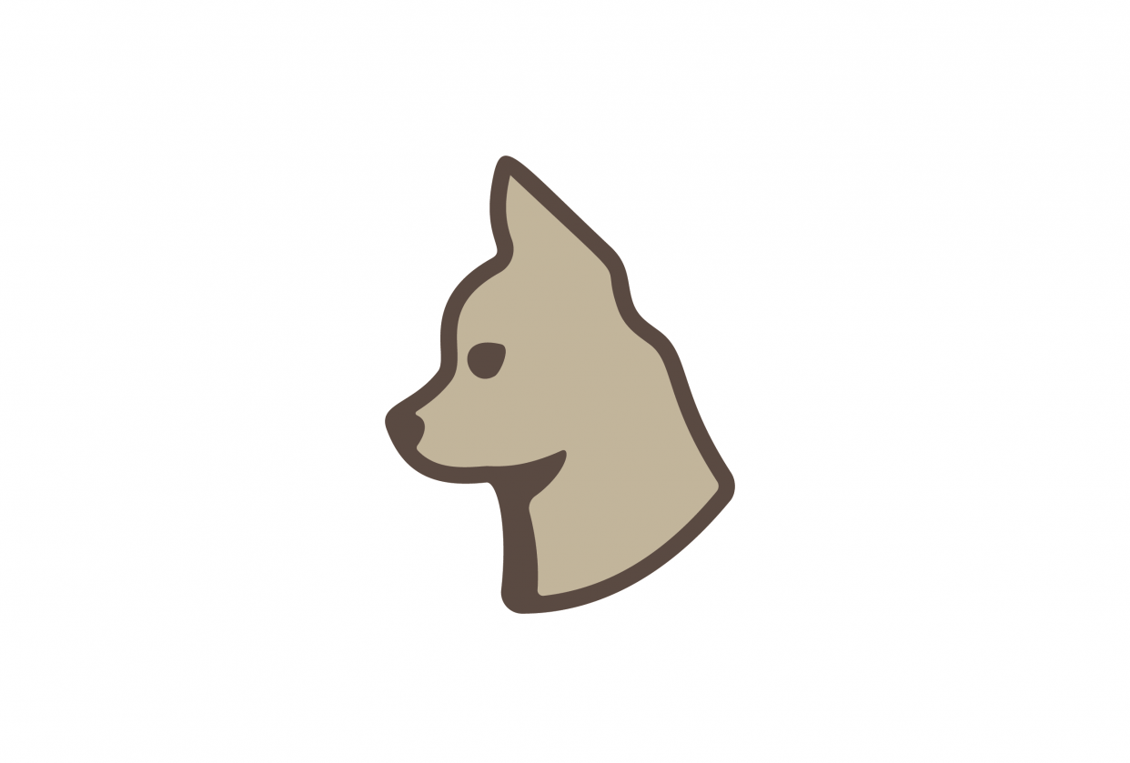 Chihuahua - student project