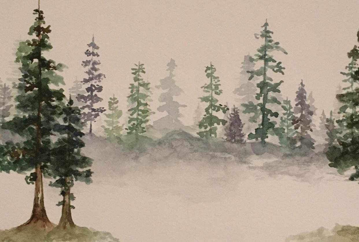 Loose Pines - student project