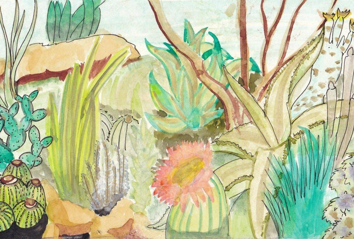 Botanical Illustration - Ashleigh - student project