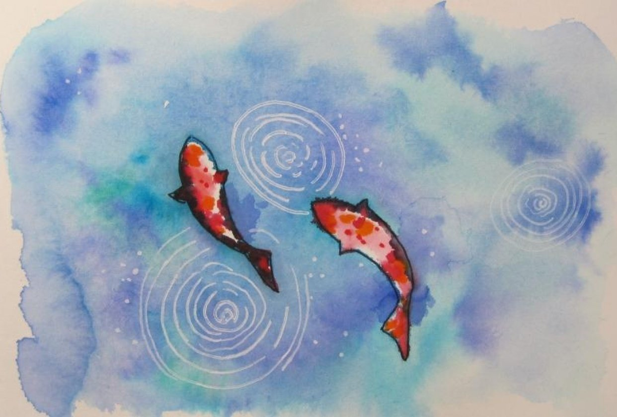 Koi - student project