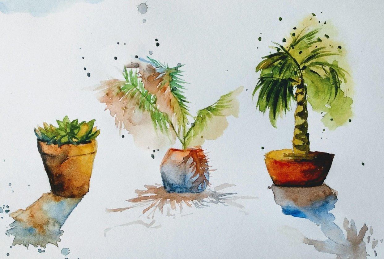Terracota pots - student project